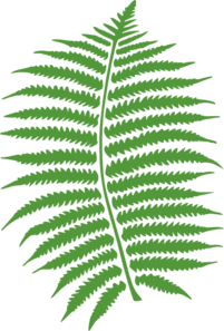 fern-leaf-md