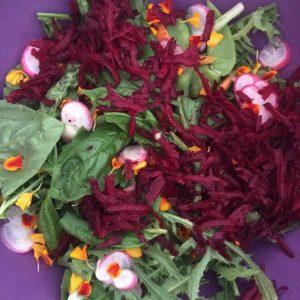 Gratuitous Salad Shot. 100% taken from our garden.