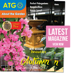 About the Garden Autumn 2017